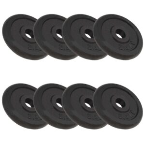 vidaXL Weight Plates 8 pcs 20 kg Cast Iron