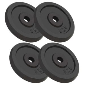 vidaXL Weight Plates 4 pcs 20 kg Cast Iron