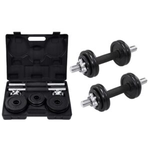 vidaXL 19 Piece Dumbbell Set 15 kg Cast Iron
